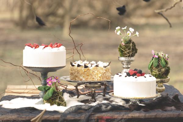 hunger-games-wedding-cakes-2