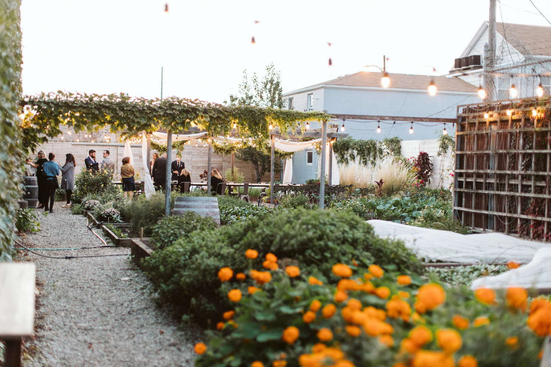 intimate fall weddings urban garden big delicious planet